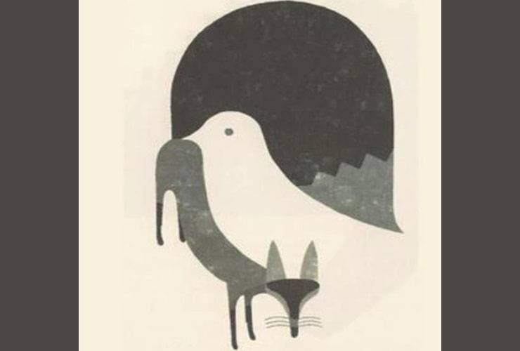 test volpe piccione