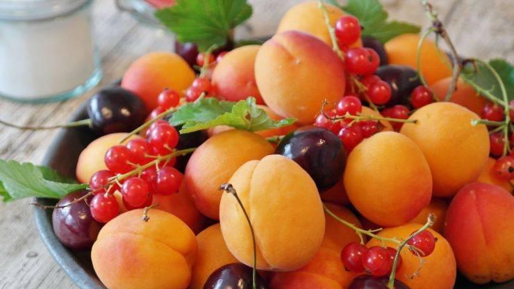 frutta estiva