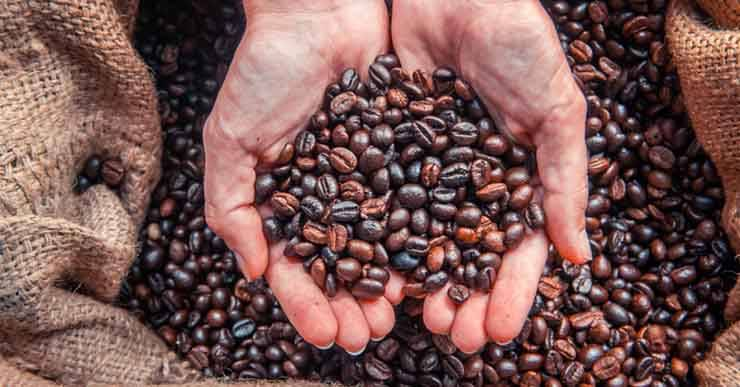 test chicchi caffè