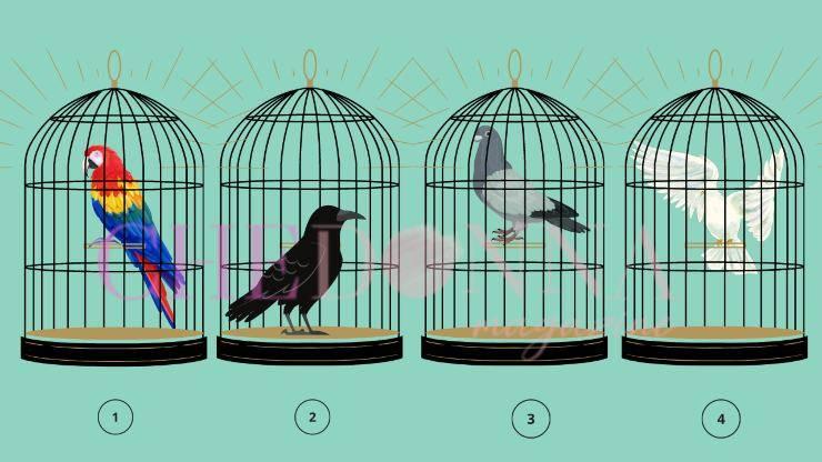 test dell'uccello in gabbia