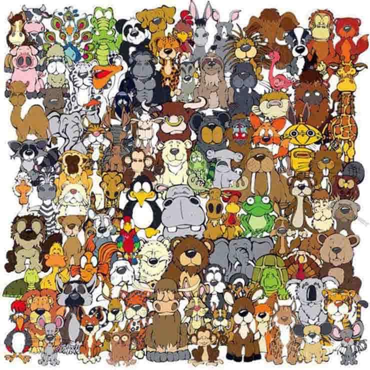 ttest immagine animali zoo