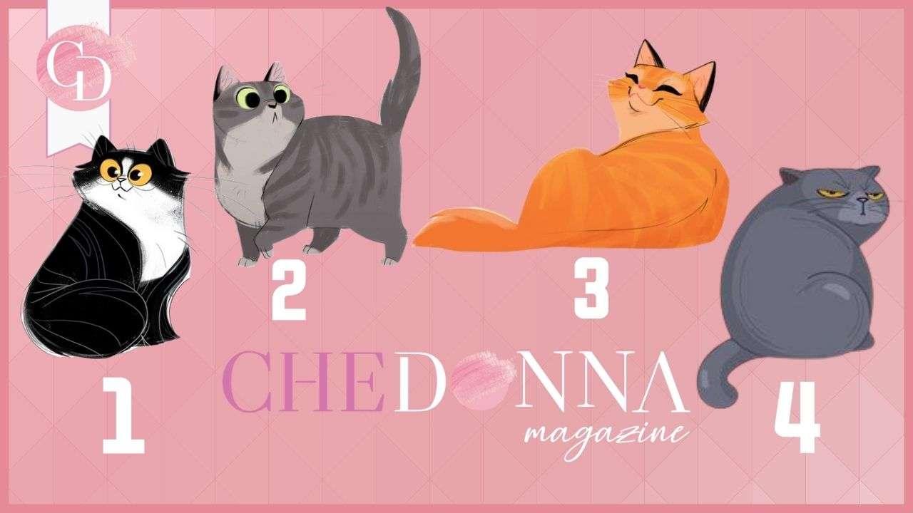 test dei gatti