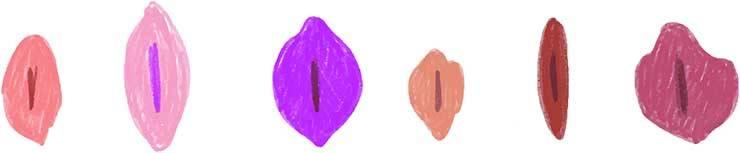 aspetto della vagina
