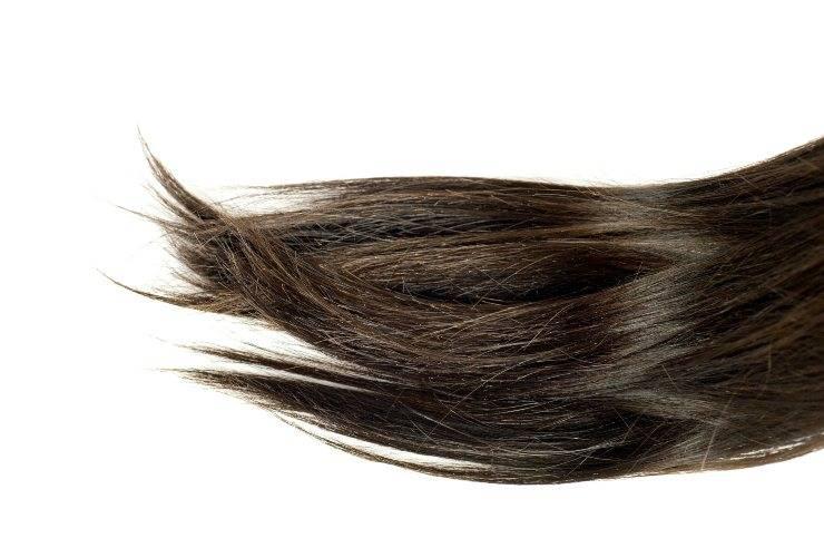 Ciuffo di capelli con doppie punte su fondo bianco