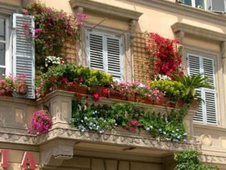 Terrazzo fiorito 328x248 CASA sistemiamo vasi e fioriere