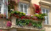 Terrazzo fiorito e1335262353819 163x100 CASA sistemiamo vasi e fioriere