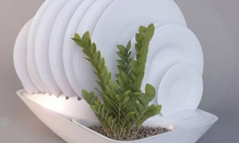 idee arredamento: uno scolapiatti ecologico e floreale! - chedonna.it - Idee Arredamento Ecologico