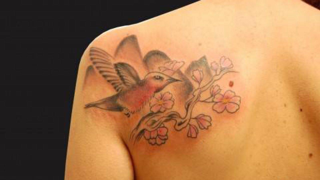 Colibri Tattoo Uomo tatuaggi: colibrì, significato e foto