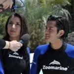 zoomarine33